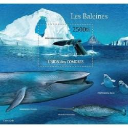 مینی شیت پستانداران - والها - 2 - کومور 2011 قیمت 14 دلار