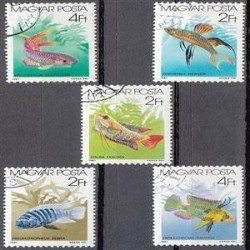 5 عدد تمبر ماهیها - مهرخورده - مجارستان