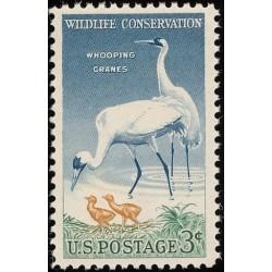 1 عدد تمبر حفاظت از حیات وحش  - آمریکا 1957